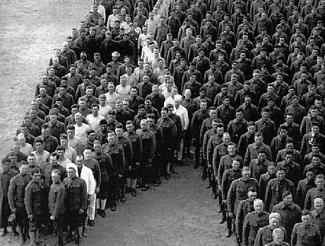 חיילים עומדים דום לזכרם של סוסים שנהרגו במלחמת העולם הראשונה